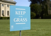 Sign-Grass Yes
